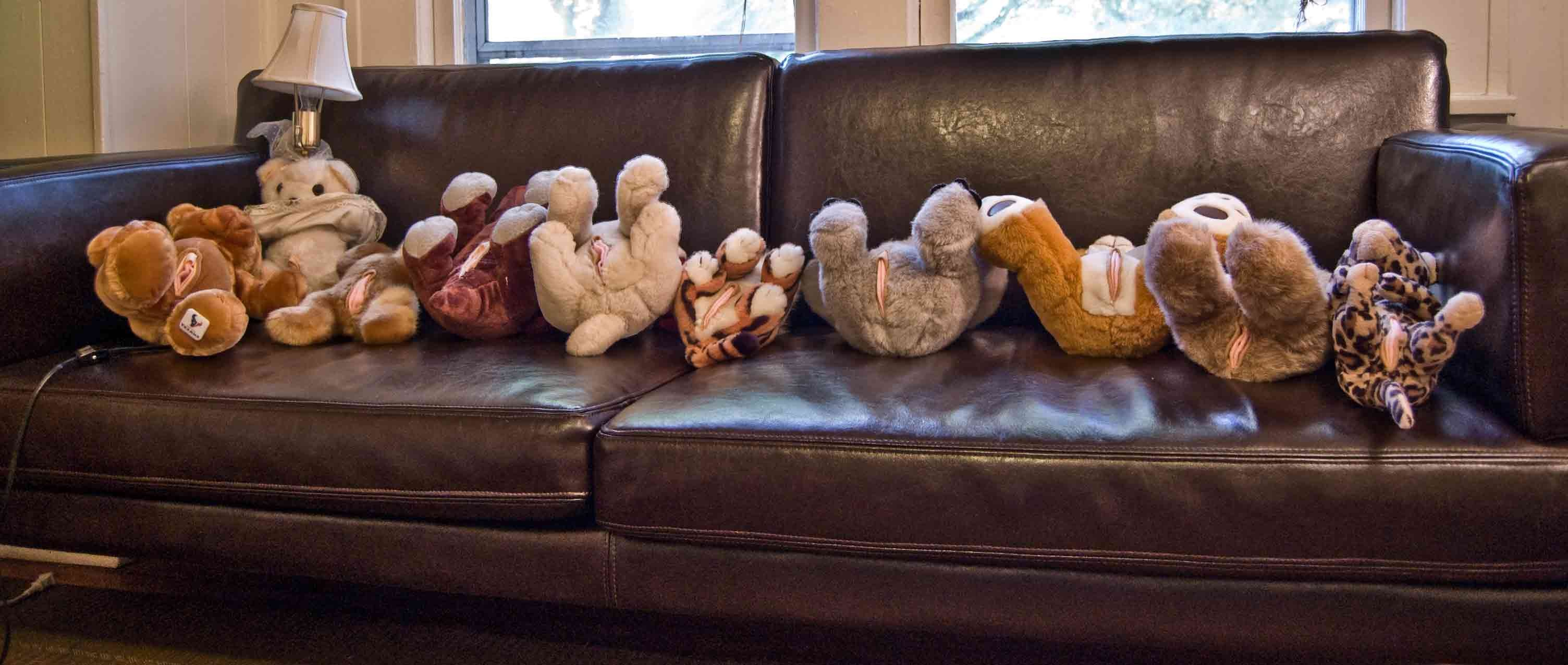 A Teddy Bear Orgy