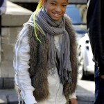 New Doo Alert! Willow Smith Whips Her Waist-Length Neon Braids…