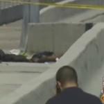 Miami Zombi Attack Straightfromthea-3