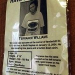 williams flyer
