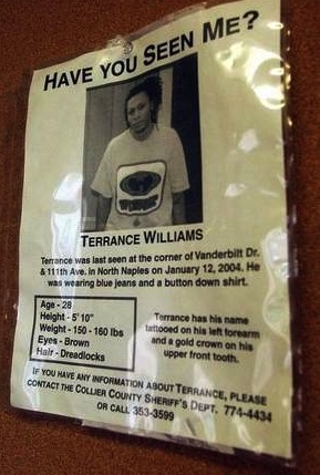 williams flyer