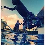 usher v swim