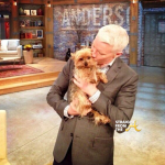 RIP Kenya Moore Dog Velvet and Anderson Cooper StraightFroMTheA 1